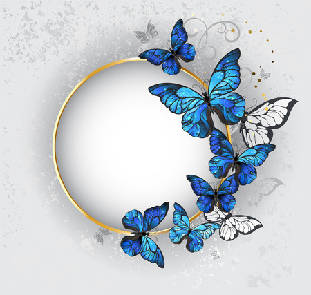 butterfly isolated: Round gold banner with blue butterflies morpho on gray textural background. Design with butterflies.