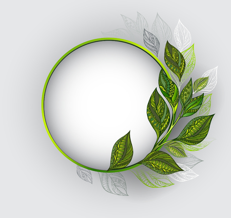 tea plantation: Round banner with a green frame, decorated with patterned, green and gray leaves of tea on a gray background. Tea design.