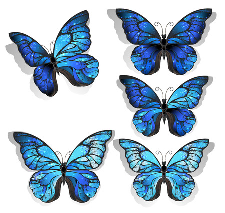 set of artistically painted blue butterfly morpho textured with iridescent wings on a light background.  Morpho. Design with blue butterflies morpho.