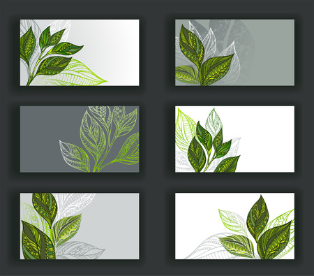Set of business cards, decorated patterned sprouts and leaves of tea. Tea design. Vectores