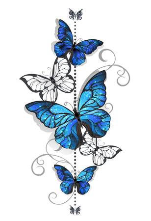 white color: Composition of blue butterflies morpho and white butterflies on a white background. Morpho. Design with blue butterflies morpho.