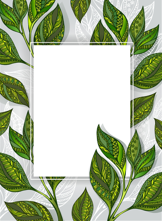 ceylon: White rectangular banner with patterned, green and gray leaves of tea on a gray textural background. Tea design.