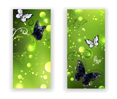 morpho: Two rectangular banner with black butterflies on green glowing background. Greenery. Design with butterflies. Illustration