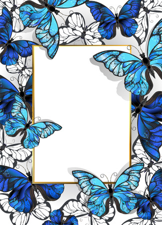 morpho: Rectangular banner with gold frame and blue, realistic, butterflies morpho on a light background. Design with blue butterflies morpho.