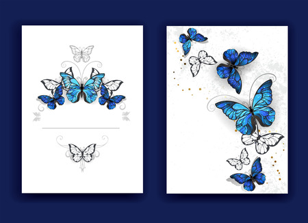 Design broschury with blue butterflies morpho on a white background. Morpho. Design with blue butterflies morpho.
