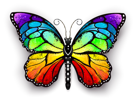 Realistischer Monarchfalter in allen Farben des Regenbogens auf einem weißen Hintergrund. Regenbogen-Schmetterling. Vektorgrafik