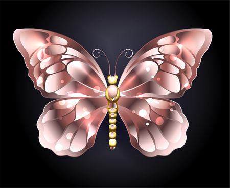 Jewelry butterfly in pink gold on a black background. Pink gold.  Golden Butterfly.