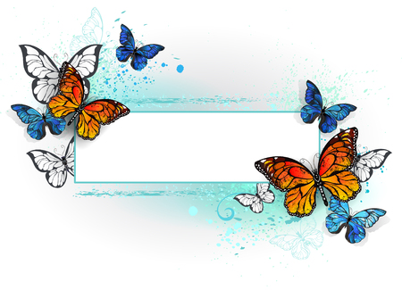 Rectangular banner with blue butterfly morpho and orange monarch butterfly on a white background. Morpho. Monarch butterfly. Design with butterflies.