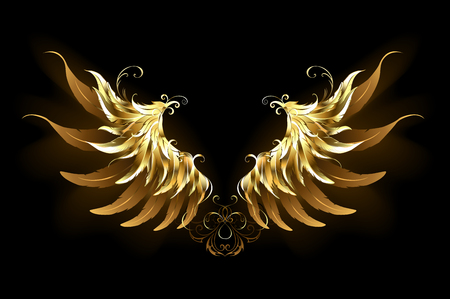 Shiny, golden angel wings on a dark background. Golden wings.