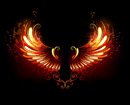 Wings of fire and flame on black background.