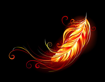 Bright feather made of fire and flame on black background.