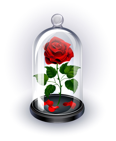 Red, eternal rose under sparkling crystal dome on white background.