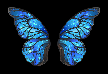 Detailed, blue butterfly wings morphines on black background.