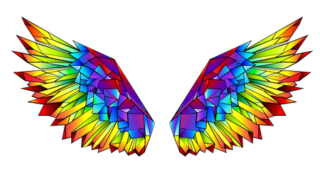 Artistically drawn, bright, rainbow, polygonal wings on white background.