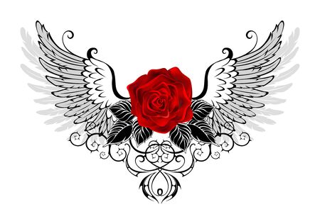 Red, blooming rose with gray, contoured angel wings, decorated with  black pattern on white background.  イラスト・ベクター素材