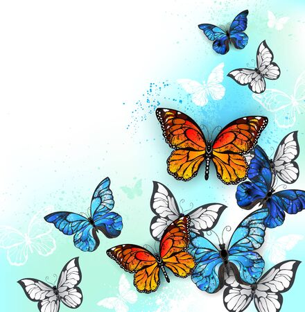 Flock of blue, orange and white realistic butterflies on white background shaded with green and turquoise spots.