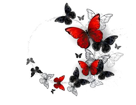 Flying black and red, realistic morpho butterflies on white background.