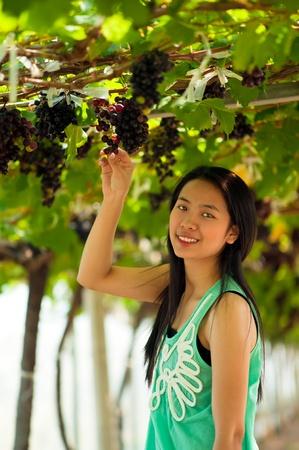 Mooie Aziatische vrouw is het oogsten van druiven in het wijngoed