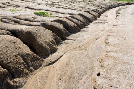 L'érosion des sols par le surpâturage et la désertification causée par l'exploitation au cours Banque d'images - 13767411