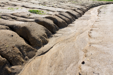 Soil erosion to overgrazing leading to desertification caused by over exploitation Stock Photo