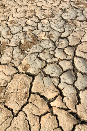 Drought land soil texture on the ground