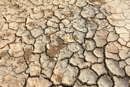 Drought land soil texture on the ground photo