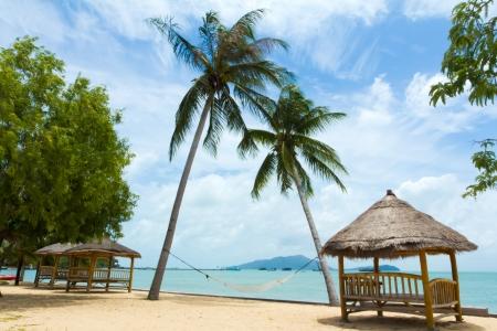 Tropische gazebo met stoelen op prachtige strand en palmboom
