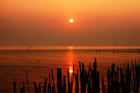 Sunset over the sea beach photo