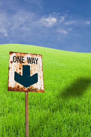 One way sign on green rice farm photo