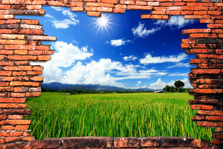 Muro de ladrillo con agujero revelando nubes y finca de arroz verde
