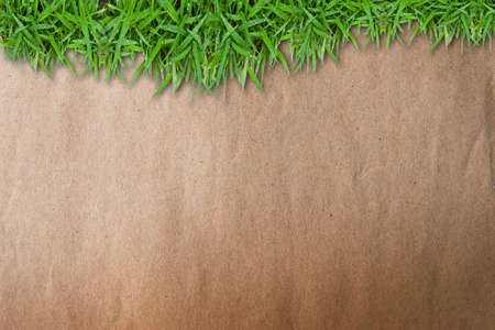 Green grass on grunge brown paper background