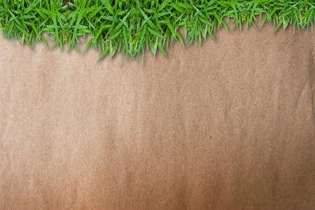 Verde hierba sobre fondo de papel marrón grunge