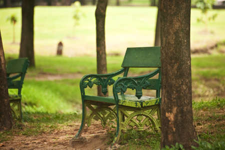 Metal chair in the garden photo