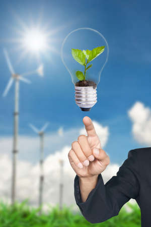 hand pointing green tree in light bulb Stock Photo - 10078546