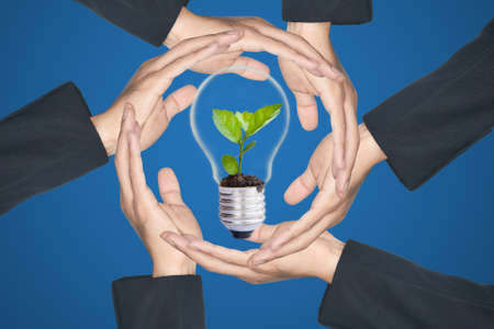 Hands protecting green tree in light bulb photo