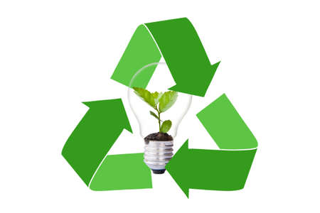 protected tree: Green tree in light bulb protected by reclycle logo Stock Photo