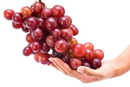 Hand holding red grape fruit isolate on white background photo