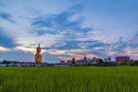 angthong: Big buddha with green rice farm foreground, Thailand