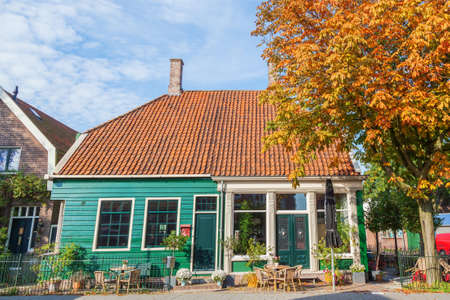 townhome: Autumn tree with Zaaneschans city townhome, the Netherlands