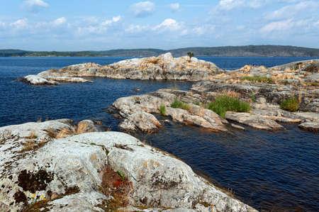 islets: islets