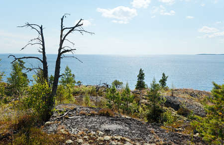 open spaces: Open spaces of Ladoga