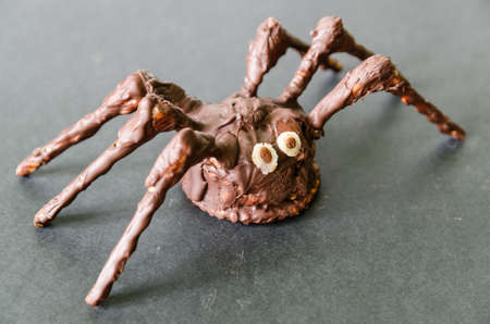 chocolate homemade spider on black background - stock photo photo