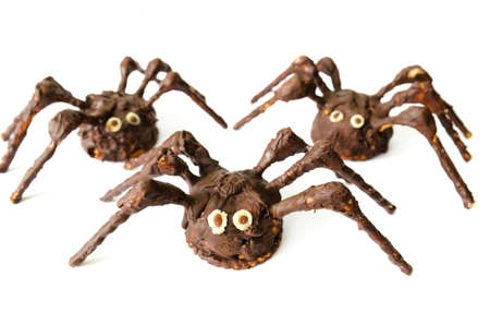 chocolate homemade spiders isolated on white background - stock photo photo