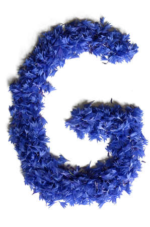 letter G made of flowers  cornflowers  isolated on white background - stock photo