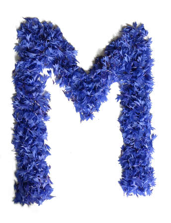 letter M made of flowers (cornflowers) isolated on white background - stock photo Stock Photo