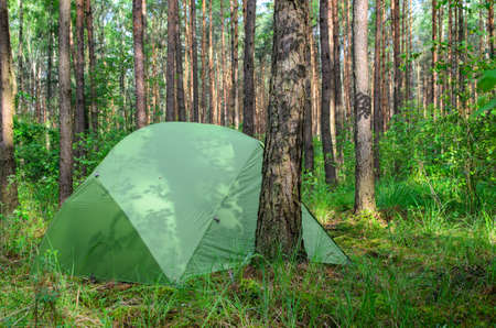 stealth: hidden in forest pitched tent - example of stealth camping - stock photo Stock Photo