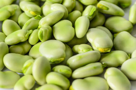 closeup of broad bean - background, texture - stock photo