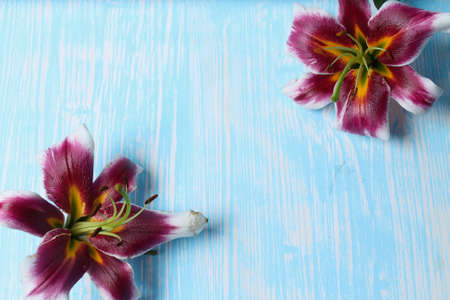 Lilies on the table