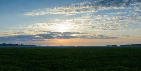 agro: sunset on field  Stock Photo