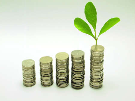 Money concept plant growing investment photo
